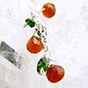 小さな干し柿(完熟)